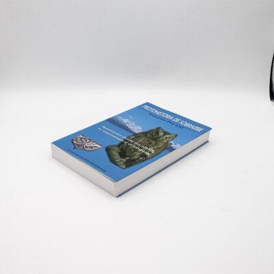 cartel libro protohistoria sobrarbe suelopagina