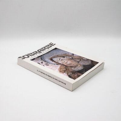 cartel libro revista ces 2007 n11 suelolomo