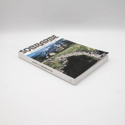 cartel libro revista ces 2019 n17 suelolomo