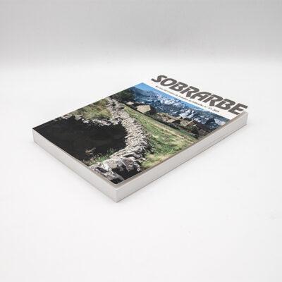 cartel libro revista ces 2019 n17 suelopaginas